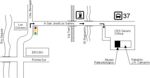 DIRECCIONES INTERESANTES: Museo de la Asociación Cultural Paleontológica Murciana